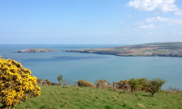 Looking across to Cardigan Island from the start of the Cemaes Head section of the Pembrokeshire Coastal Path