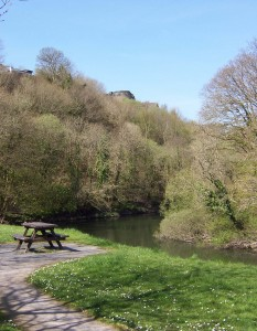 A picnic bench in the foreground next to a river, flowing below trees and a castle on a hilltop.