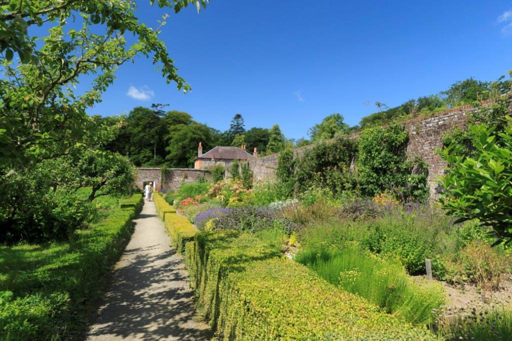 A very green walled garden with a pathway leading to an archway.