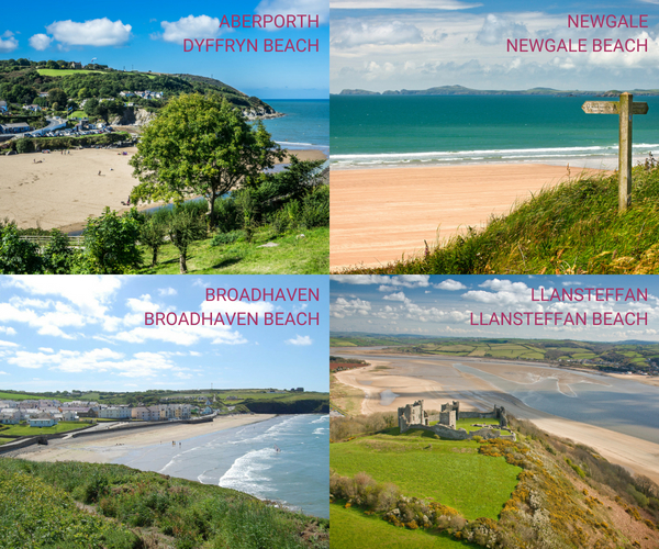 A collection of 4 dog-friendly beaches in West Wales: Ceredigion, Pembrokeshire and Carmarthenshire