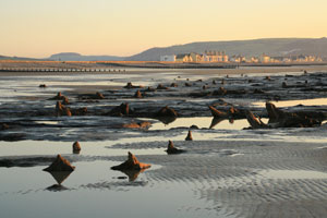 Submerged Forest at Borth