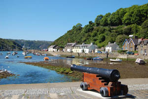 Fishguard guide west wales holiday cottages for Cannon fish company
