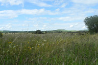 Photo of Cors Caron Nature Reserve, Tregaron.