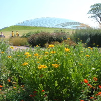 Photo of National Botanic Garden of Wales