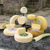 Photo of Pantmawr Farmhouse Cheeses