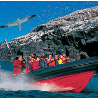 Photo of Pembrokeshire Island Boat Trips