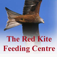 Photo of The Red Kite Feeding Centre.