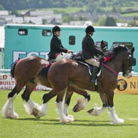Photo of The Royal Welsh Agriculture Show.