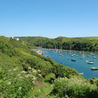 Photo of Solva Beach